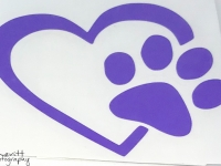 Purple Heart and Paw