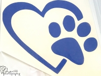 Blue Heart and Paw