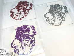 Australian Shepherd 2 Decal